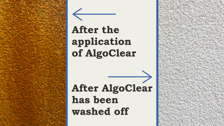 before and after AlgoClear treatment