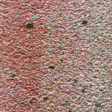 Building with red algae